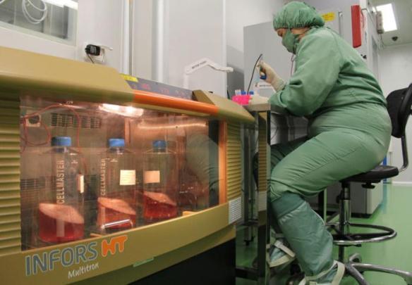 new advances in cancer granma international