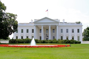 Workers conduct demolition on the White House's North Lawn