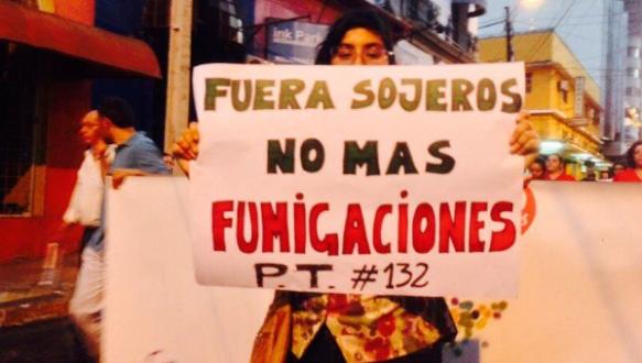 paraguay indigenous march against agrichemicals