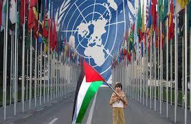 palestine an d the un
