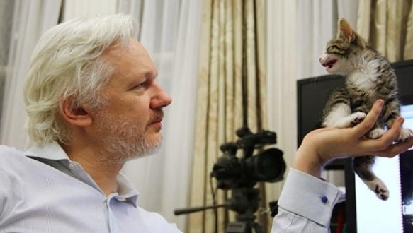 julian assange 4 years in ecuador's embassy.jpg