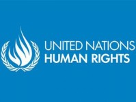united-nations-human-rights-logo