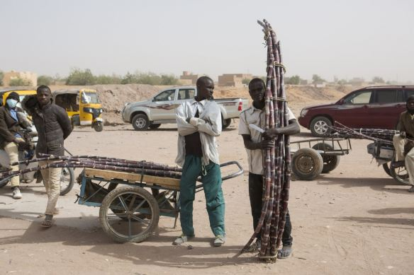 sugarcane vendors in niger.jpg